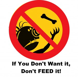 If you don't want it don't feed it